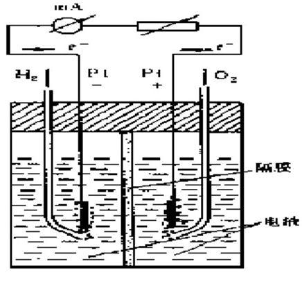 氢-氧燃料电池原理图